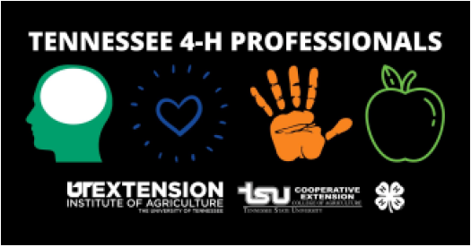 Tennessee 4-H Professionals