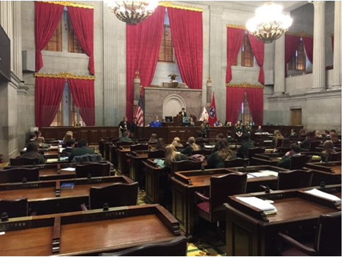 BILLS & RESOLUTION FOR STATE 4-H CONGRESS