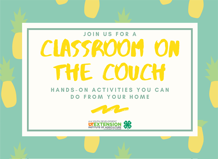 Classroom On The Couch