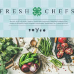 Fresh Chefs