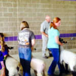 STATE SHEEP CONFERENCE SET FOR MAY 25-26, 2018