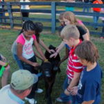 Summer Fun and Education