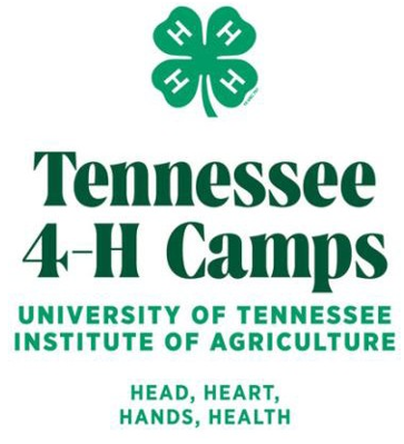 Summer 4-H Camp Top Counties