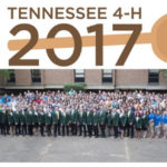 4-H Roundup: Showcasing Excellence