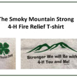 The Smoky Mountain Strong 4-H Fire Relief T-Shirt