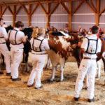 State 4-H DairyShow