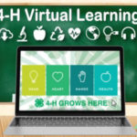 4-H Virtual Learning