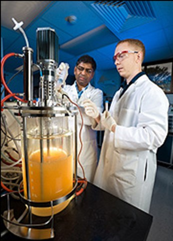 Scientists looking at equipment