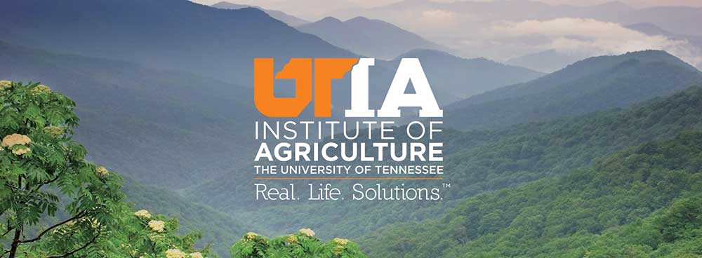 University of Tennessee Institute of Agriculture