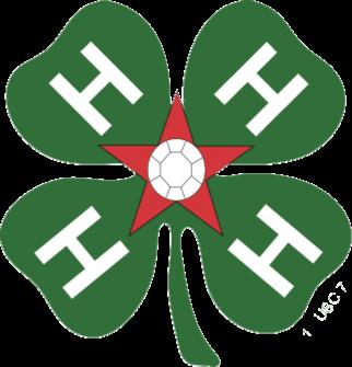 4H All Stars Logo