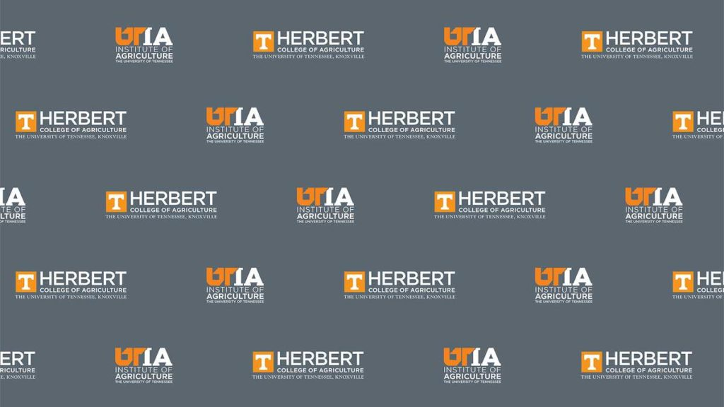 The UT Institute of Agriculture and Herbert College of Agriculture logos alternate on a slate gray background