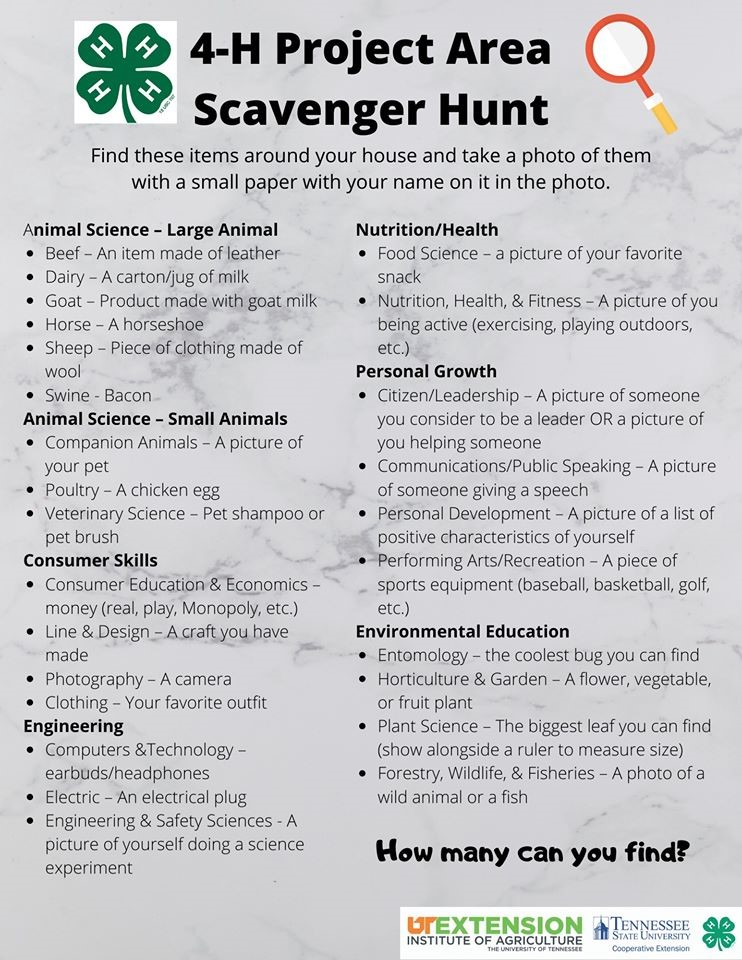4-H Project Scavenger Hunt
