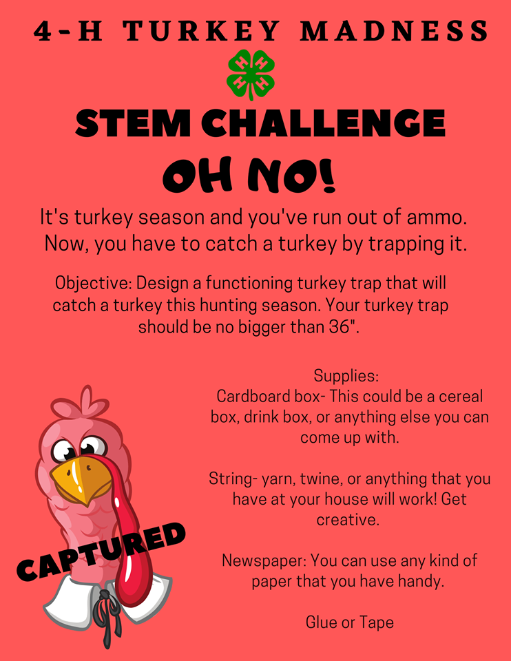 4-H Turkey Madness