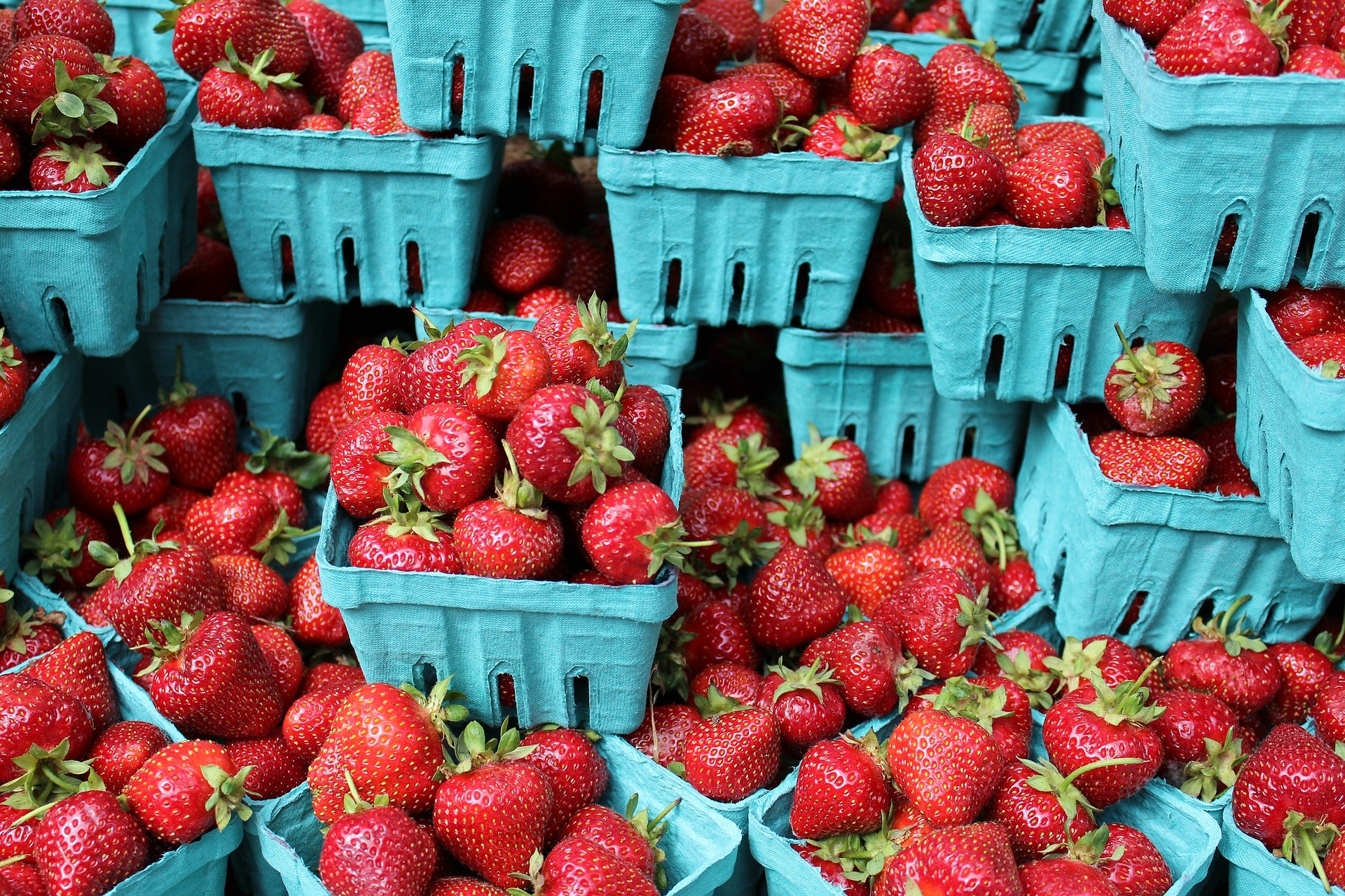 Picture of strawberries in pint containers to sell.