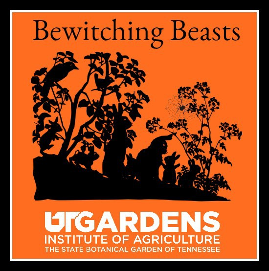 Bewitching Beasts Event Graphic