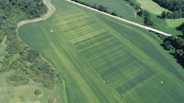 variety trials from the air