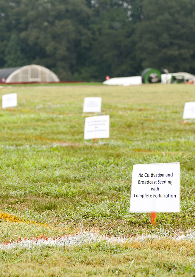 Plots of turf grass marked out with orange lines and small white signs