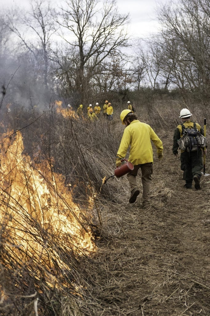 A student in a bright yellow jacket and hard hat walks at the edge of a controlled burn plot