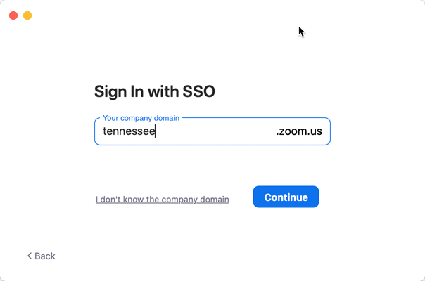 A screen capture showing the correct text to enter to sign in with SSO